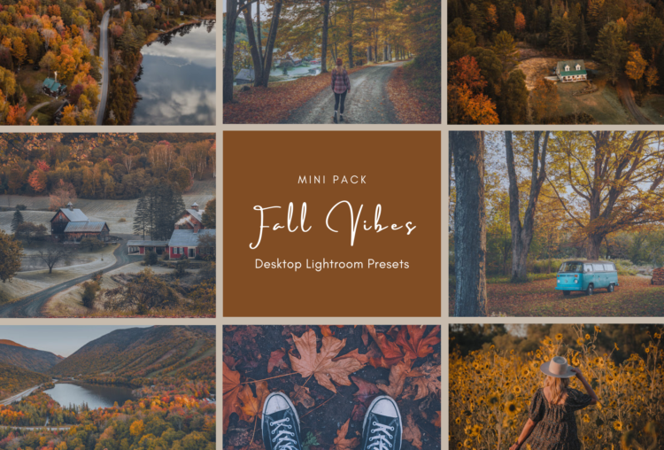 Fall Presets for Lightroom
